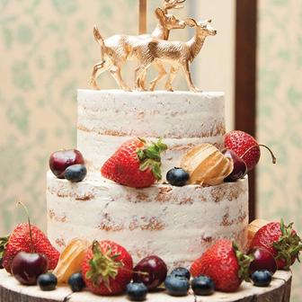 Cake-sample4